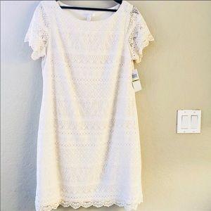 Elegant Lace Dress in off-white/cream. NWOT